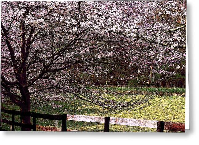 Stone Fence Greeting Cards - Petals In the Wind Greeting Card by Joyce Kimble Smith