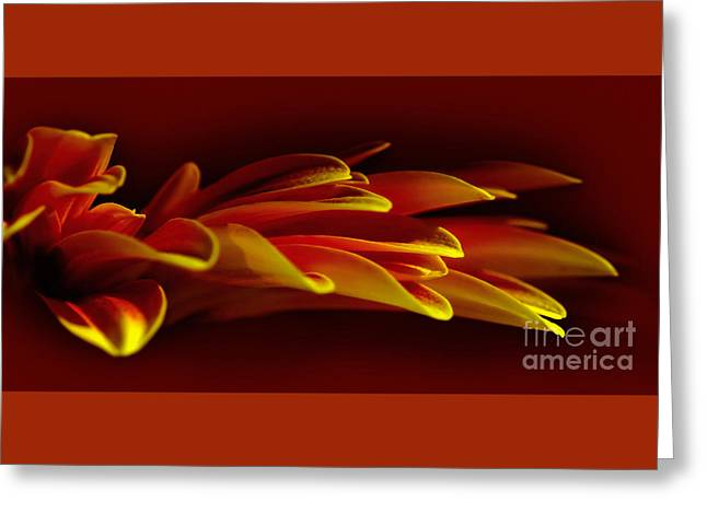 Petals Like Fingertips By Kaye Menner Greeting Card by Kaye Menner