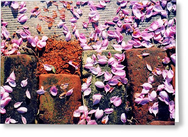 Greeting Card featuring the photograph Petals On The Bricks 2 Ae by Lyle Crump