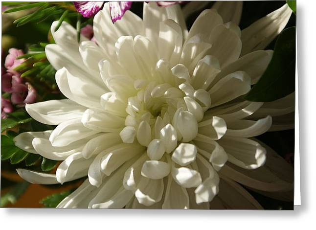 Petals Profusion Greeting Card