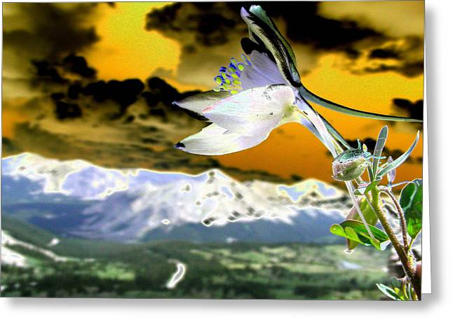 Petals To The Sky Greeting Card by Peter  McIntosh
