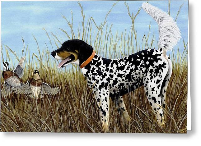 Setter Pointer Greeting Cards - Pete Greeting Card by Deborah Collier