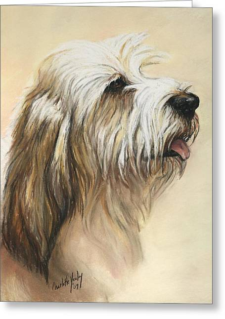 Petit Basset Griffon Vendeen Greeting Card