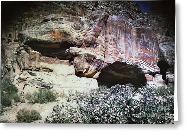 Petra, Transjordan: Cave Greeting Card by Granger