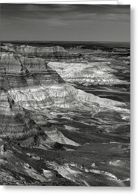 Petrified Forest Mesa Greeting Card by Joseph Smith