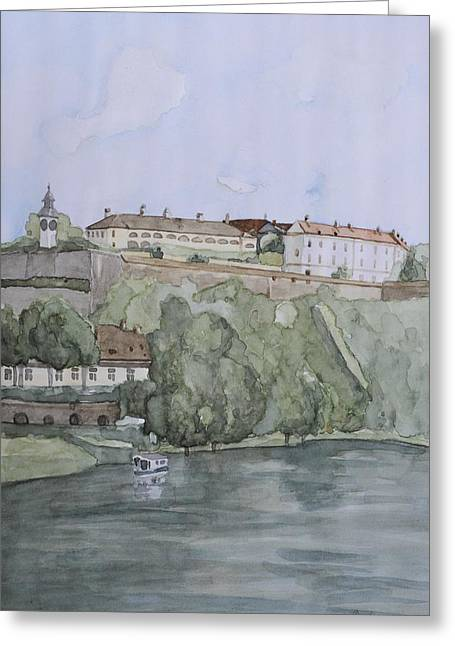 Petrovaradin Fortress Greeting Card by Desimir Rodic