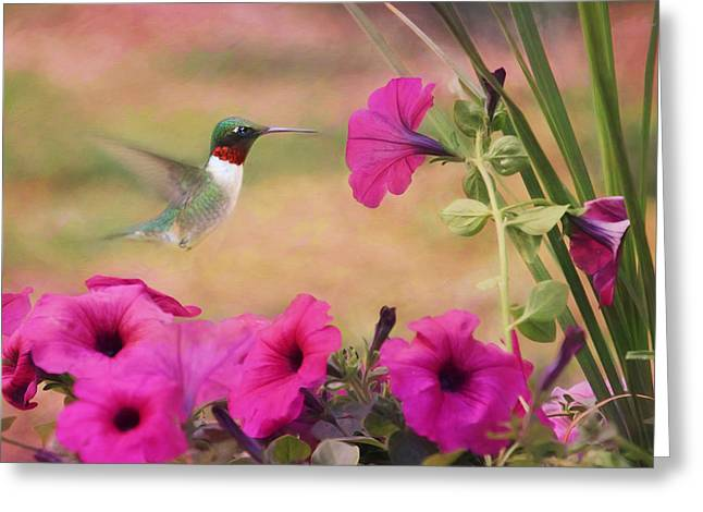 Petunia Lover Greeting Card by Lori Deiter