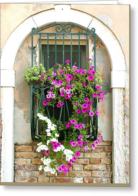Greeting Card featuring the photograph Petunias Through Wrought Iron by Donna Corless