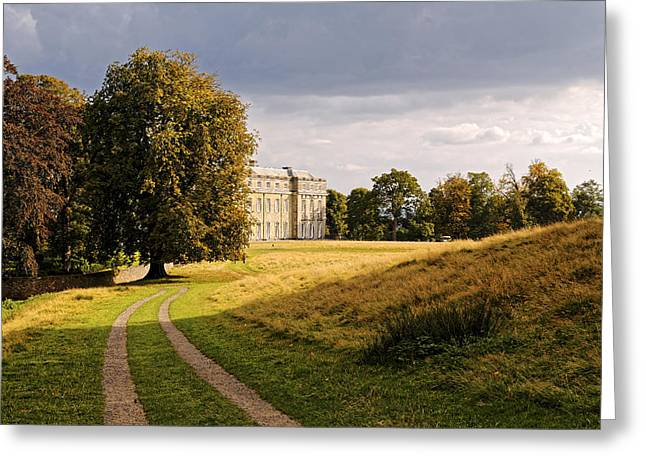 Greeting Card featuring the photograph Petworth Landscape by Michael Hope