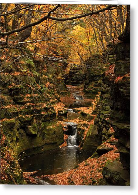 Pewit's Nest - Wisconsin Greeting Card