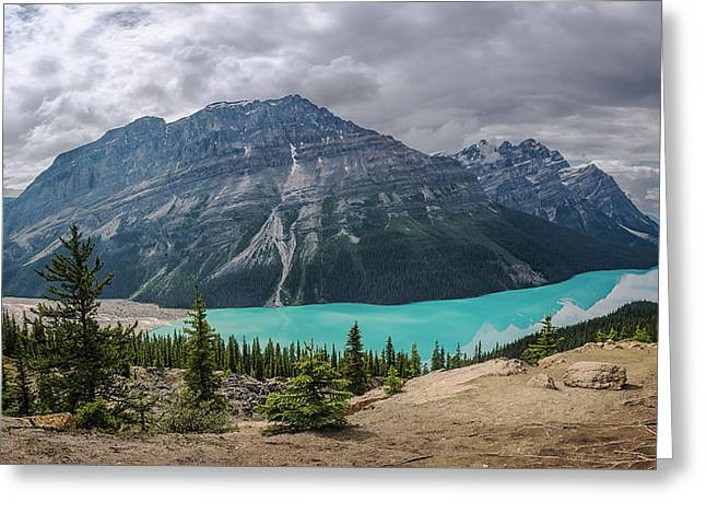 Peyto Lake Banff Greeting Card