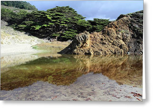 Pfeiffer Beach Landscape Greeting Card by Pierre Leclerc Photography