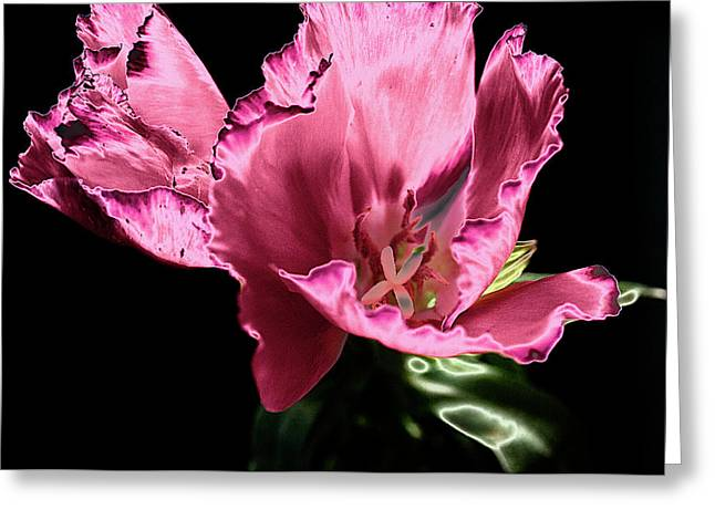 Pflower Pfunn Greeting Card by Sheryl Thomas