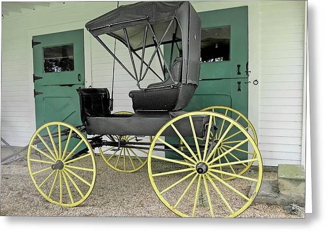 Phaeton Or Carriage   Greeting Card by Phyllis Taylor
