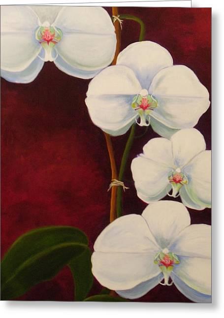 Phaleanopsis Greeting Card by Anne Marie Brown
