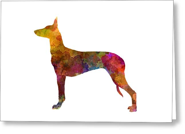 Pharaoh Hound In Watercolor Greeting Card