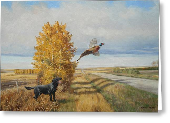 Pheasant Flush Greeting Card by Norman Kelly