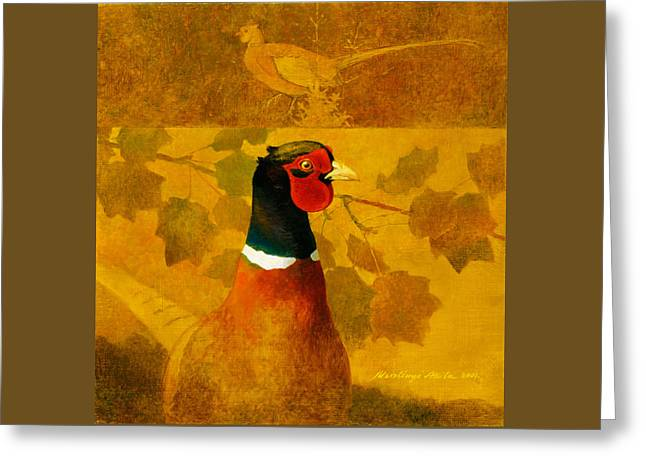 Pheasant In Yellow Greeting Card