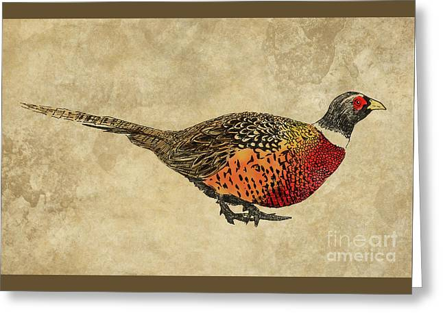 Pheasant On Old Brown Paper Greeting Card by Apostrophe Art