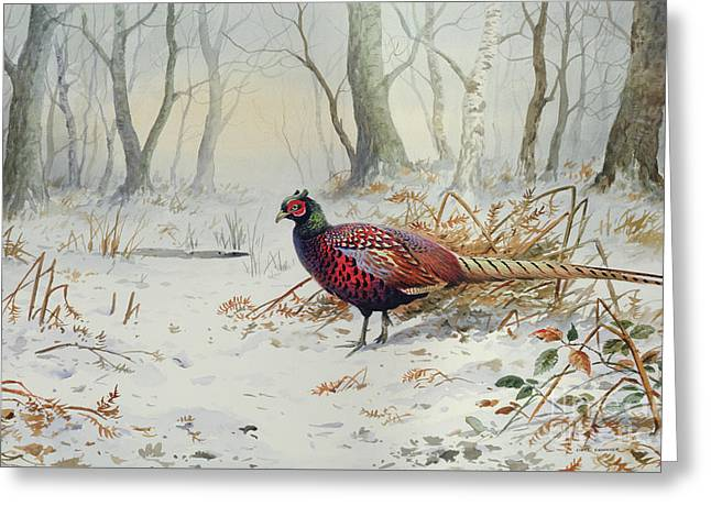 Pheasants In Snow Greeting Card by Carl Donner