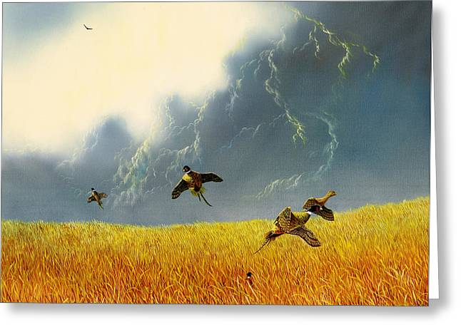 Pheasants On The Rise Greeting Card by Don Griffiths