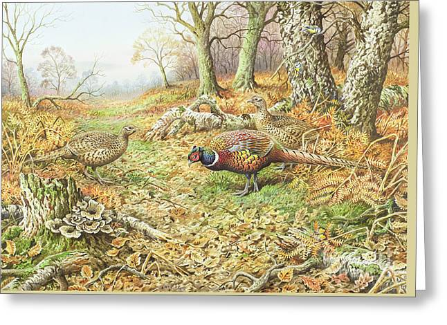 Pheasants With Blue Tits Greeting Card by Carl Donner