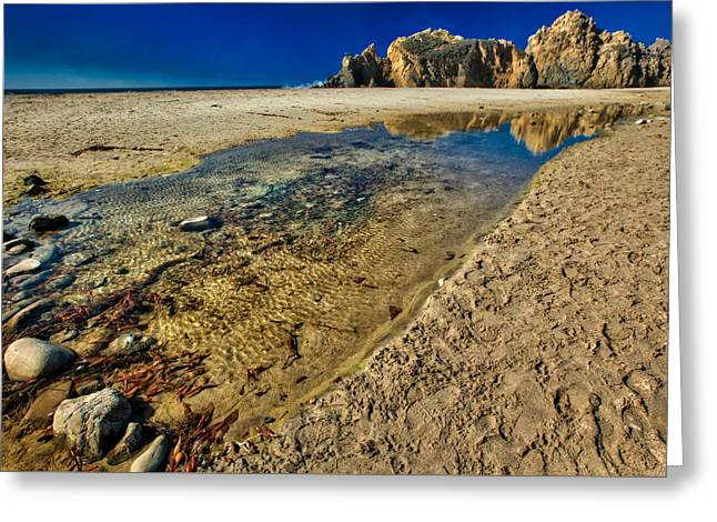 Pheiffer Beach #1 - Big Sur California Greeting Card by Jennifer Rondinelli Reilly - Fine Art Photography