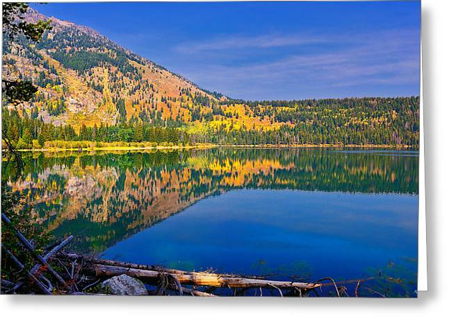 Phelps Reflections Limited Edition Greeting Card by Greg Norrell