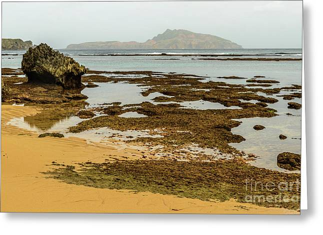 Phillip Island 01 Greeting Card
