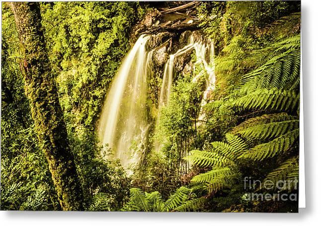 Philosopher Falls, Western Tasmania Greeting Card