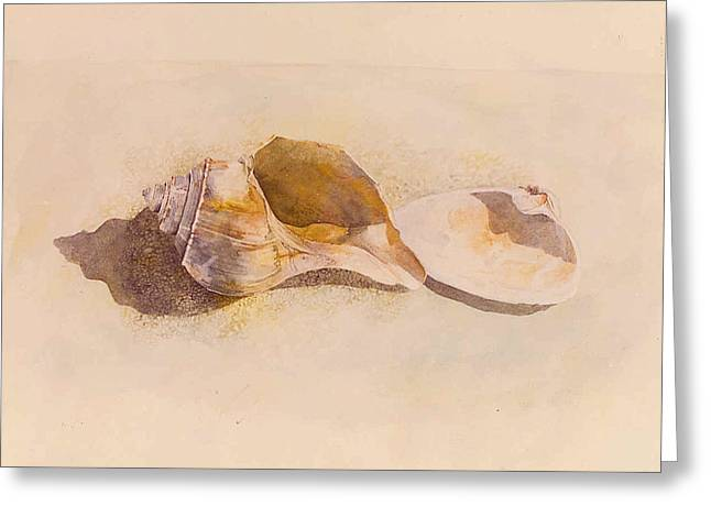 Phinney's Point Shells Greeting Card