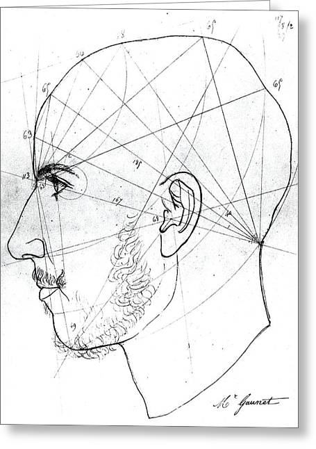 Phrenological Study Greeting Card by French School