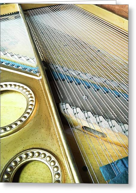 Piano Strings Greeting Card by Tom Gowanlock