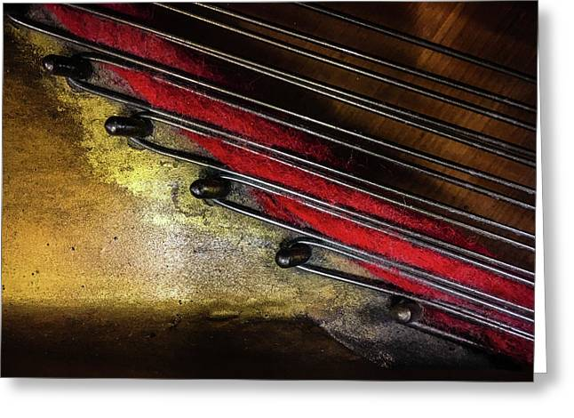 Piano Wire II Greeting Card by Jae Mishra