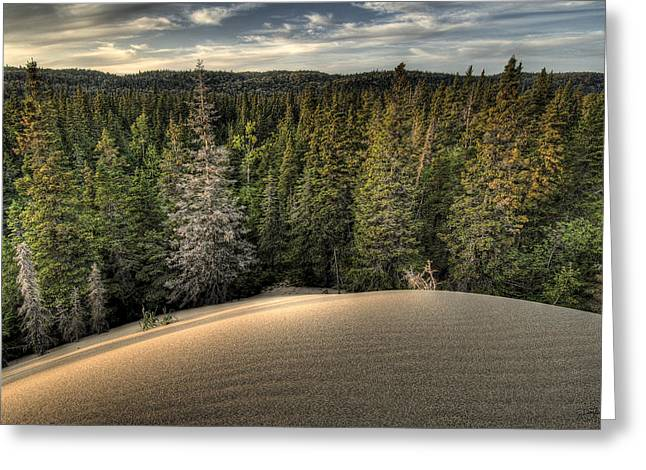 Pic Dunes   Greeting Card