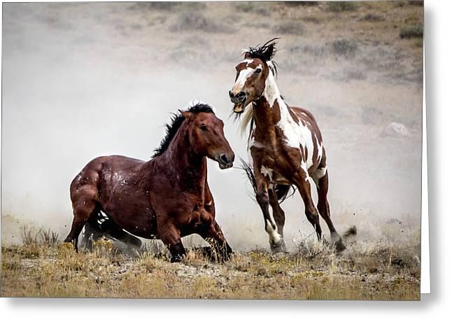 Picasso - Wild Stallion Battle Greeting Card