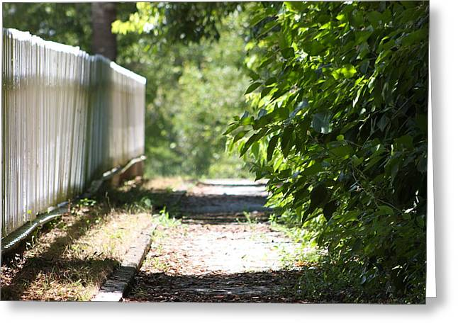 Picket Fence Greeting Card by Bruce McEntyre