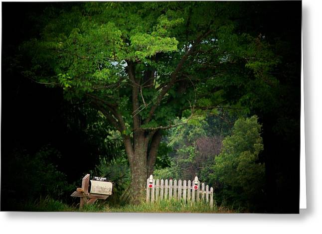 Picket Fence Mailbox Greeting Card by Michael L Kimble