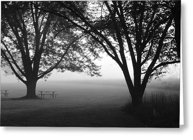 Picnic In The Fog Greeting Card by Lauri Novak
