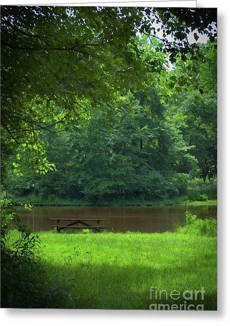 Picnic Perfect Greeting Card by Skip Willits