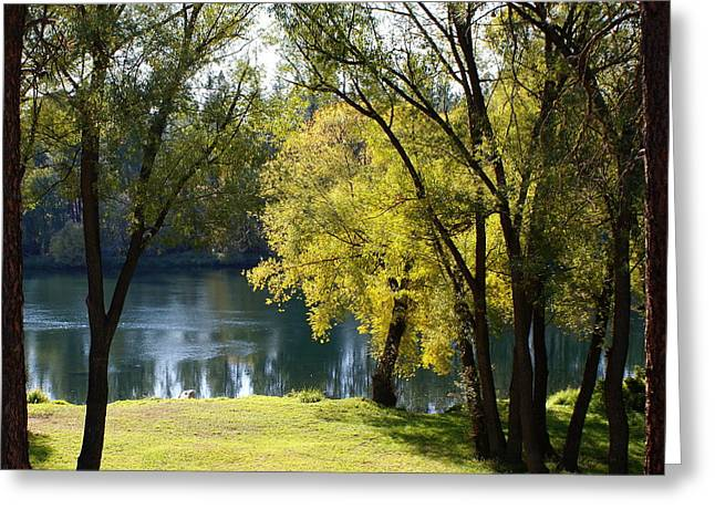 Greeting Card featuring the photograph Picnic Spot On Spokane River by Ben Upham III