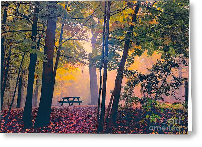 Picnic Table In The Autumn Woods Greeting Card by Robert Gaines