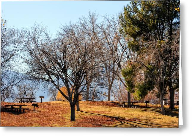 Picnic Greeting Card by Tammy Espino