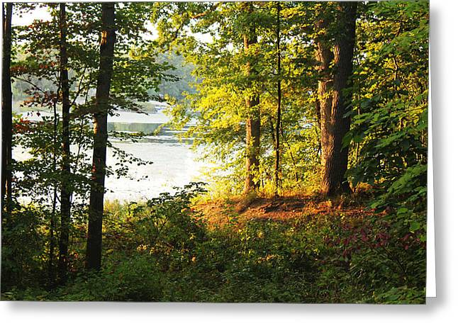 Picturesque Greeting Card by Mark  France