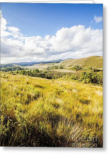 Picturesque Tasmanian Field Landscape Greeting Card