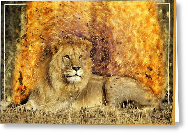 Pieces Of A Lion Greeting Card
