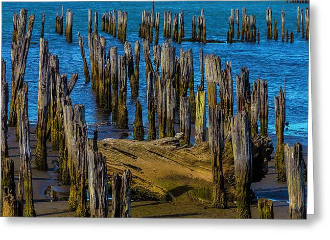 Pier Posts In Decay Greeting Card by Garry Gay