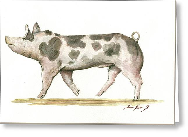 Pietrain Pig Greeting Card by Juan Bosco