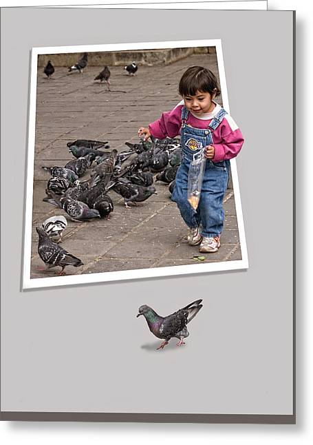 Pigeon Control Problem - Child Feeding Pigeons Greeting Card by Mitch Spence