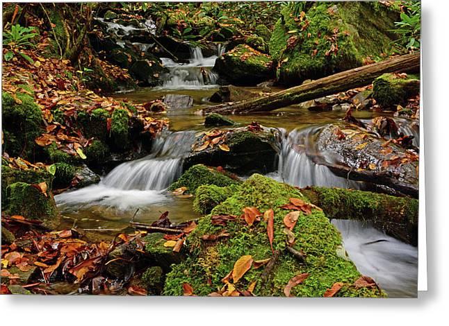 Pigeon Creek Cascades Greeting Card